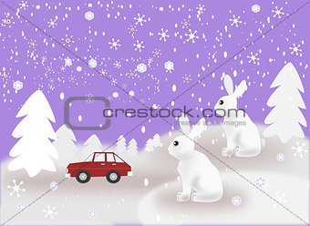 Car and Rabbits in Snowy Weather