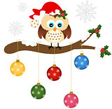 Christmas owl on holly branch with glass balls
