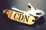 CDN - Bunch of Keys with Text on Golden Keychain.