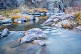 mountain stream in northern Colorado
