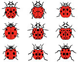 cheerful ladybugs