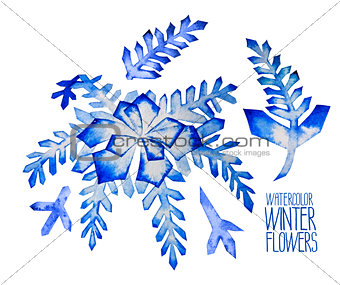 Watercolor  fntasy winter flowers