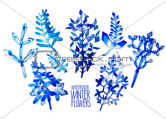 Watercolor  fntasy winter flowers