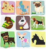 nine dog breeds