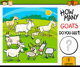 counting task with goats cartoon