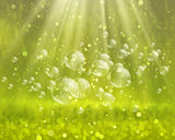 Soap bubbles on a nature background