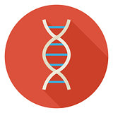 Flat Science and Medicine DNA Circle Icon with Long Shadow