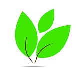 Vector simple icon of green leaf