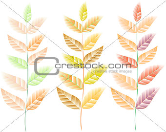 Three branches with colorful leaves