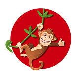 Monkey hanging on the tree