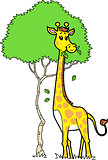 Cute Giraffe Eating Leaves