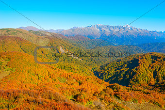 Autumn mountain landscape.