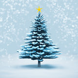 front view snow christmas tree pine isolated.