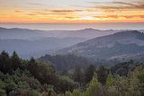 Rolling Hills Sunset Misty Mountains and Forest