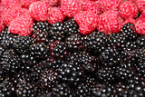 blackberries and raspberry