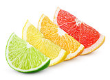 Sliced citrus fruit - lime, lemon, orange and grapefruit
