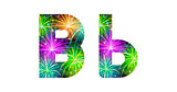 Set of letters, firework, B