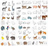 Different animals set