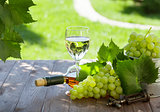 White wine bottle and glass with white grape