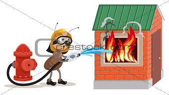 Ant firefighter extinguishes house