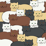 Seamless background with british cats