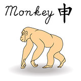 Eastern Zodiac Sign Monkey