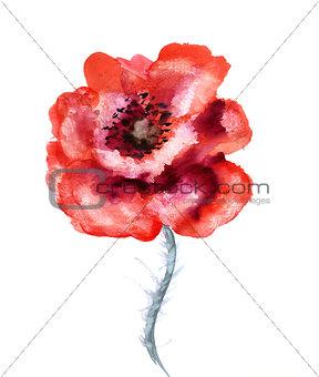 Watercolor flower poppy