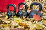 kettlebells and exercise ball