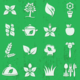 Vector vegetarian organic food icons