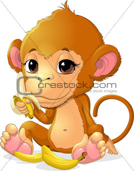 beautiful monkey that holds bananas