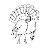 hand draw a turkey