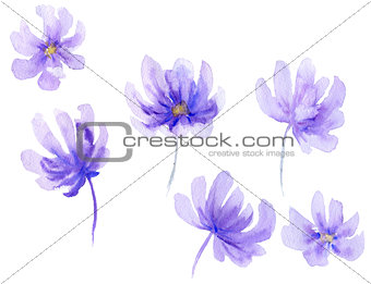 Watercolor flower shapes
