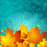 Autumn maple leaves on turquoise grunge wall texture