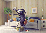 the beetle in the living room