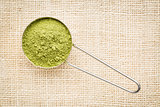 moringa leaf powder scoop