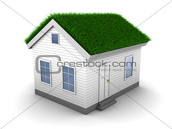 3d house with grass on roof