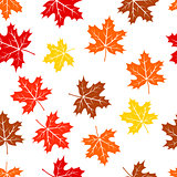 Seamless autumn maple leaves pattern