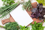 Fresh garden herbs and notepad