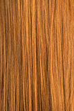 Red Hair Texture