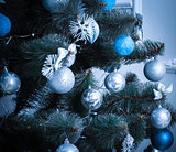 Christmas living room with Christmas Tree. blue tone