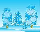 Landscape winter wood