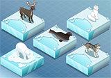 Animals 01 Tiles Isometric