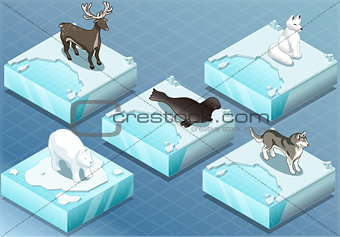 Animals 01 Tiles Isometric