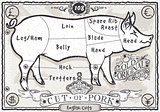 English Pork Cuts 01 Vintage 2D