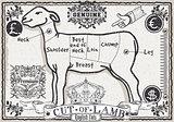 Lamb Cuts 01 Vintage 2D