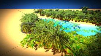 African oasis on Sahara