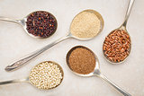 gluten free grains on tablespoons