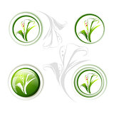 Calla Lily Flower Icon Set