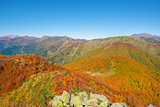 Mountain autumn landscape.