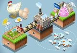Egg Chain Infographic Isometric